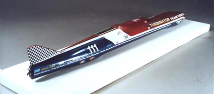 model back view